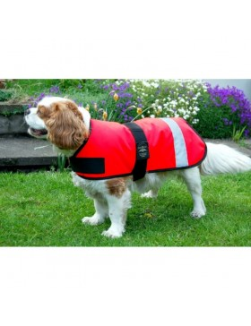 Animate Dog Coat Hiviz Unlined