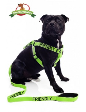 Friendly Dog Strap Harness