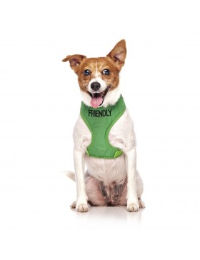 Friendly Dog Vest Harness