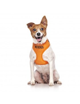 No Dogs Dog Vest Harness