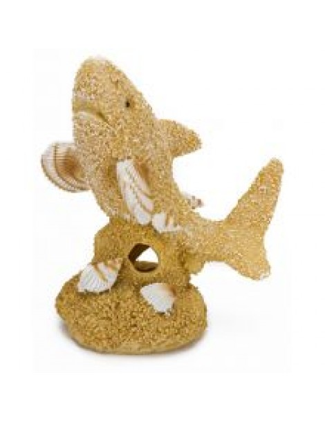 Animate Sand & Shell Shark